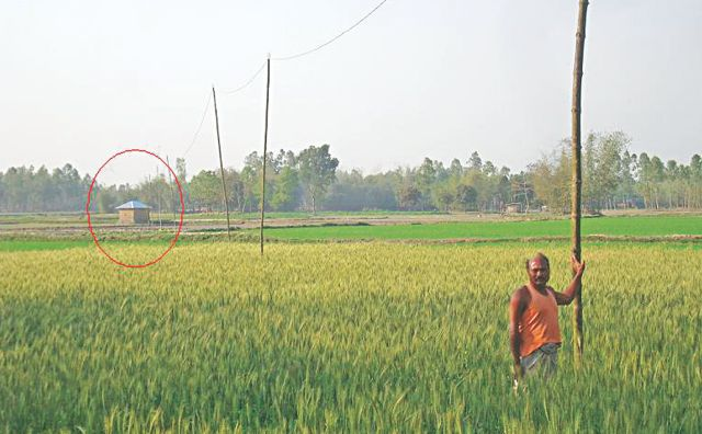 The marked tin-roofed hut in the photo is in Indian enclave and it is running an irrigation pump. But the electricity powering the pump is flowing from Bangladesh via the illegal wires held high with bamboos.  Photo: Star