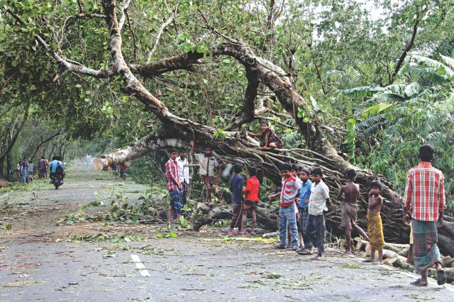 A road, blocked by trees uprooted by cyclone Mahasen at Amtoli in Barguna yesterday, is partially cleared now after the cyclone shifted away from the zone. Photo: Anisur Rahman