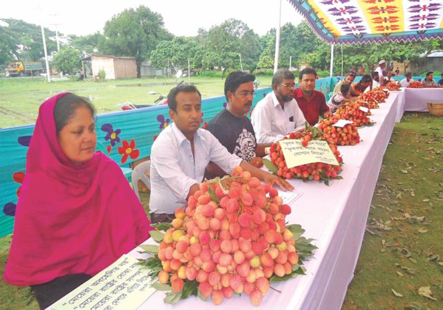 Various kinds litchis are on display at a litchi fair at Ishwardi in Pabna  Photo: STAR